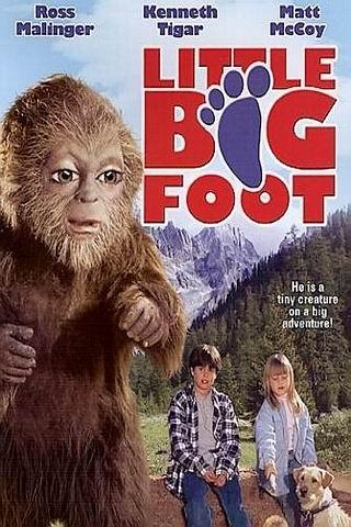 piccolo bigfoot